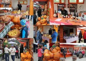 FÉK Termelői Piac @ FÉK Termelői Piac | Balatonakali | Veszprém | Magyarország