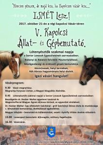 V. Kapolcsi Állat-és  Gépbemutató @ Régi kapolcsi Vásár-tér | Kapolcs | Magyarország