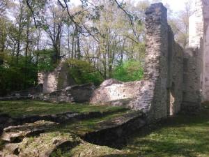 Pálos régészeti, műemlék túra és előadás @ Pálos Kolostor, Temető utca | Nagyvázsony | Magyarország