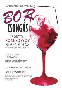 BorZsongás @ Balatoncsicsói Plébánia- Nivegy-ház | Balatoncsicsó | Magyarország