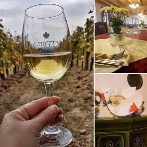 Ismét Márton napi vacsora a Gergely Borhàzban!! @ Gergely Borház  | Balatoncsicsó | Magyarország