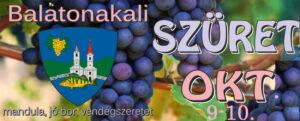 Balatonakali szüret @ Balatonakali